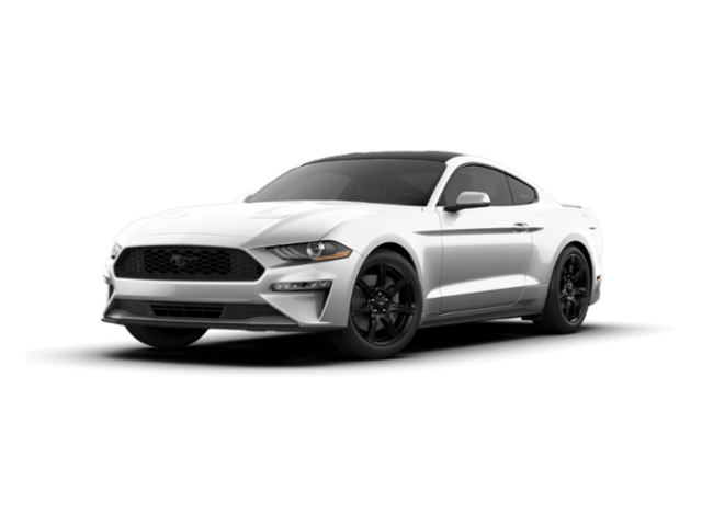 New 2019 Ford Mustang Ecoboost Coupe for sale in Jersey City